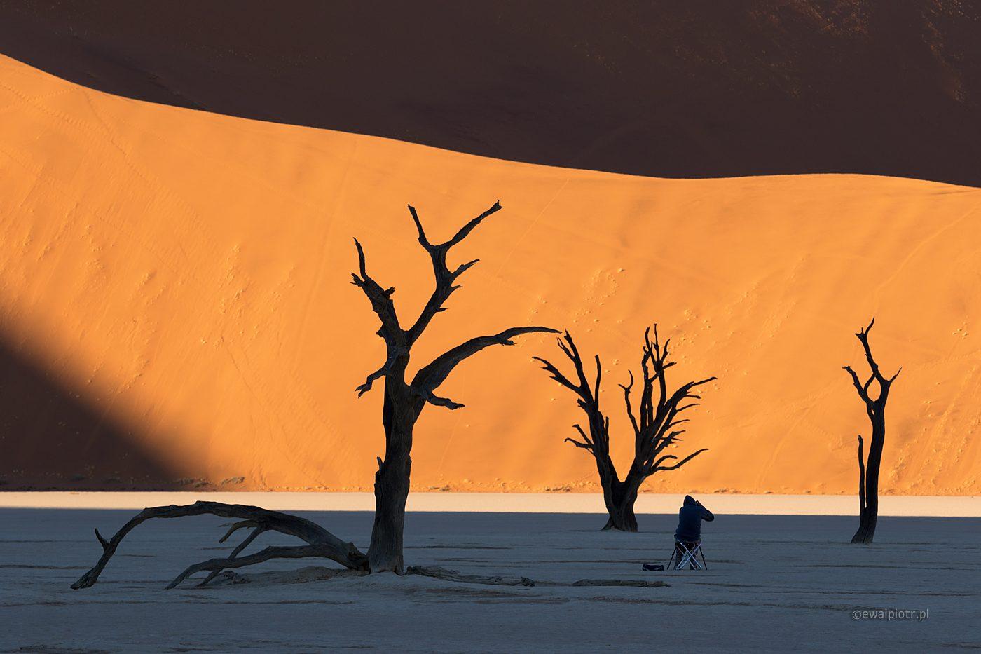 Martwy Las na pustyni w Namibii, warsztaty fotograficzne za granicą