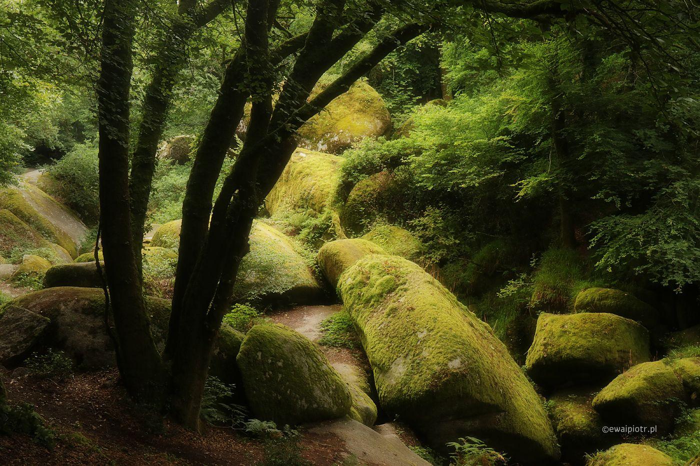 Las Huelgoat, Bretania fotowyprawa