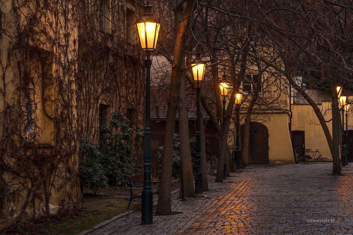 Labirynty Pragi fotowarsztaty