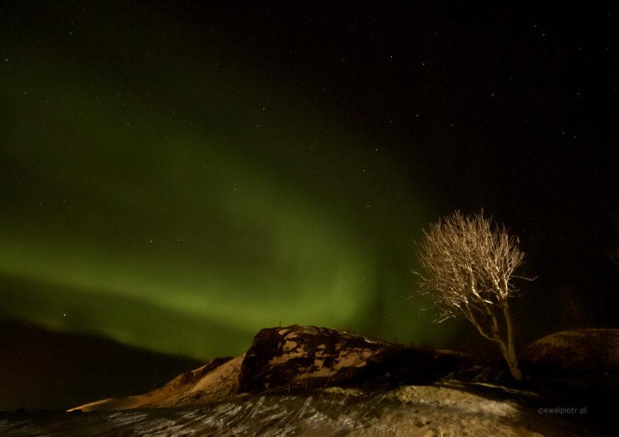 Zorza polarna, Islandia, fotoekspedycja
