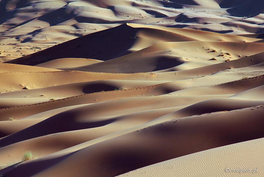 Jak pakować aparat fotograficzny do samolotu, Sahara w Maroku
