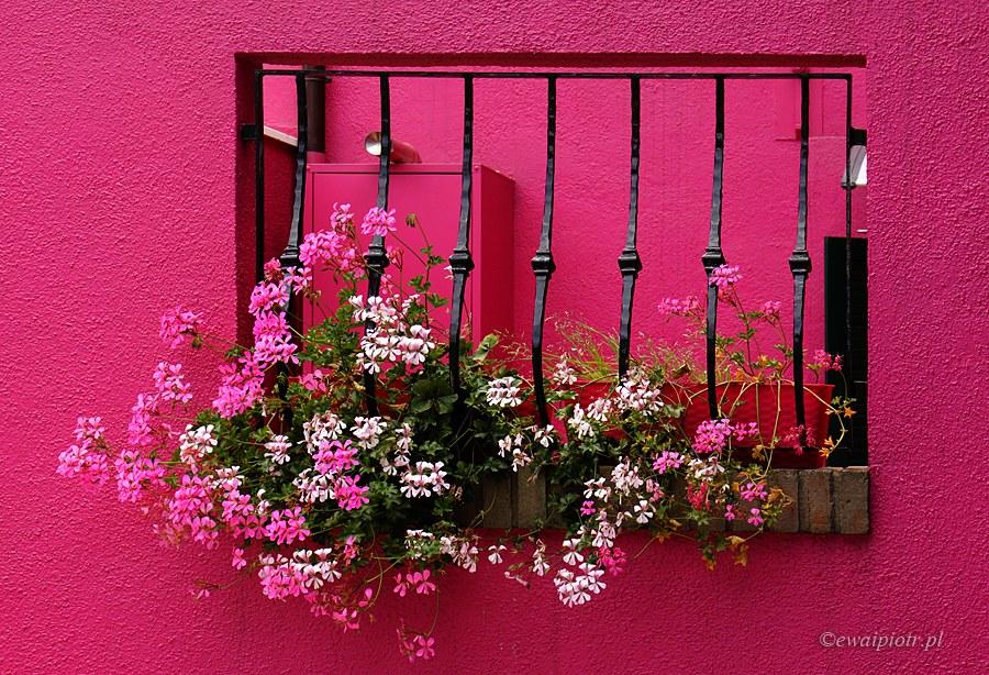 Jak widzimy kolory w fotografii
