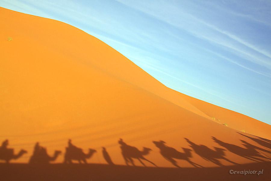 Jak robić zdjęcia na pustyni, cienie wielbłądów