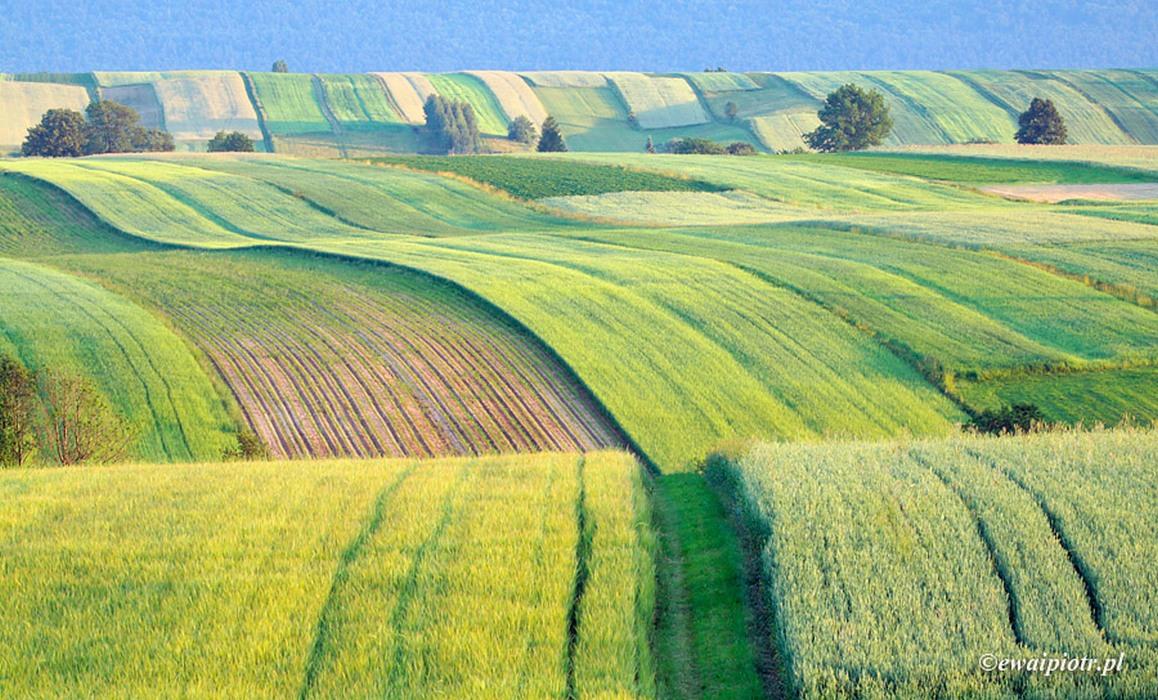 Świętokrzyska Toskania, obiektyw do krajobrazu