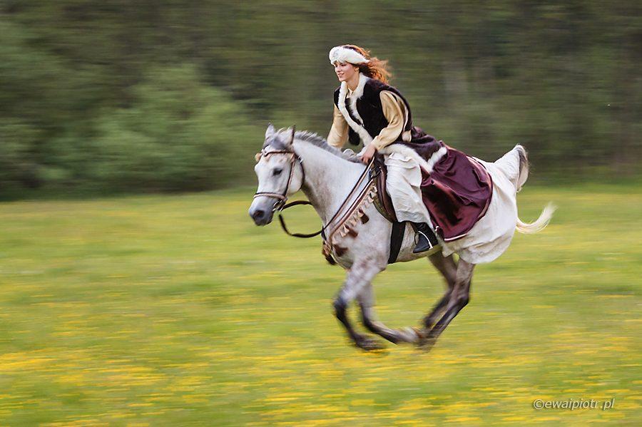 Koń i dama, technika fotograficzna, poradnik, panoramowanie