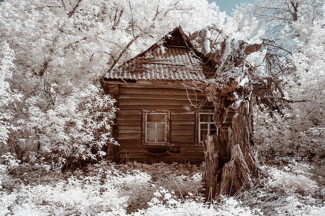 Zrujnowany dom, infrared, okolice Czarnobyla