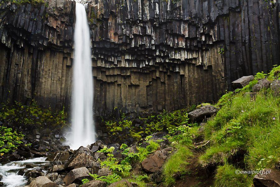 Svartifoss - Czarny wodospad, bazaltowe kolumny, przewodnik po Islandii