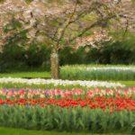 Ogród Moneta - efekt impresjonistyczny z Photoshopa
