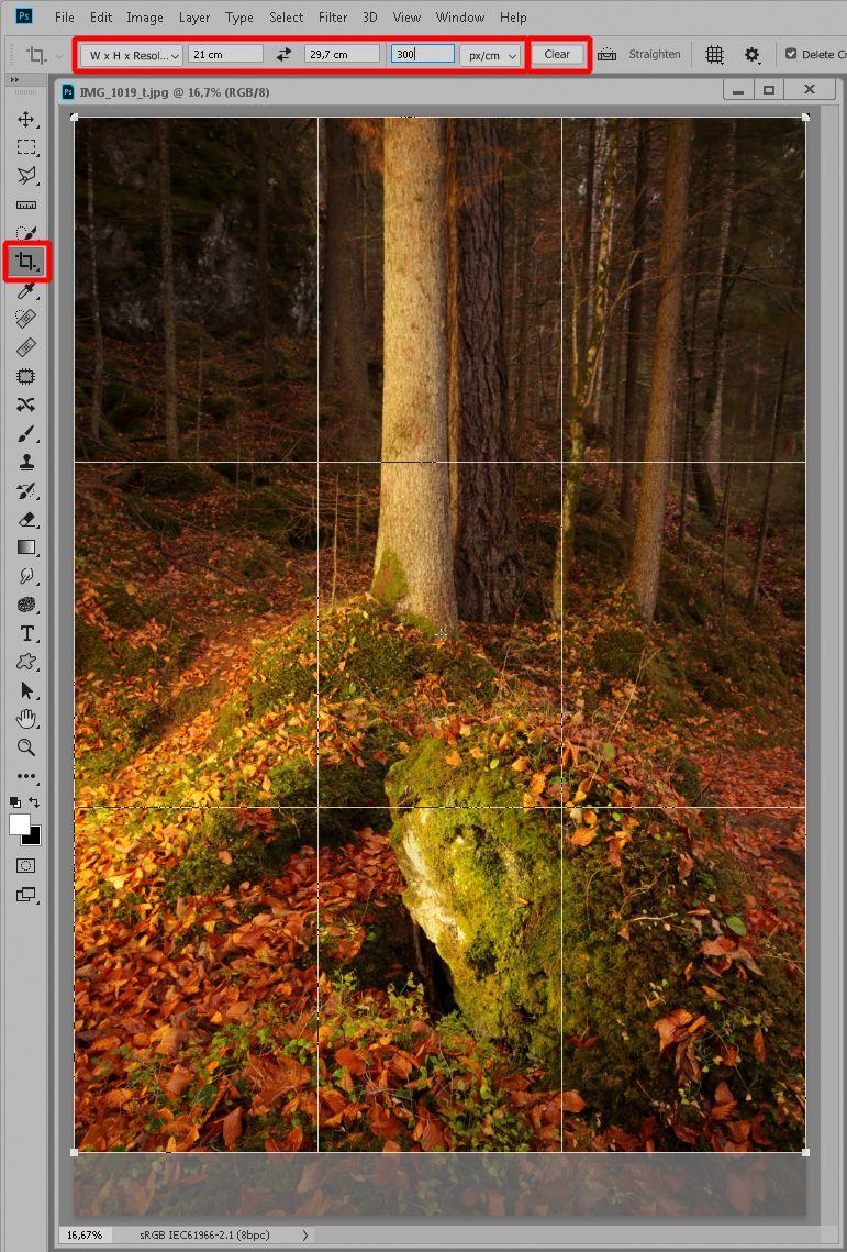 skalowanie zdjęcia do druku