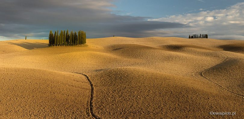 Cyprysy i brązowe pole, Toskania, prosta kompozycja, poradnik dla fotografa