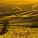 Toskańska jesień, plastyka obrazu, światło w fotografii