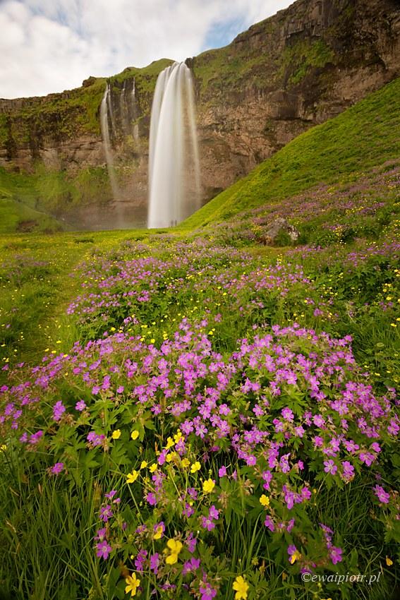 Islandia, co ustawić w aparacie