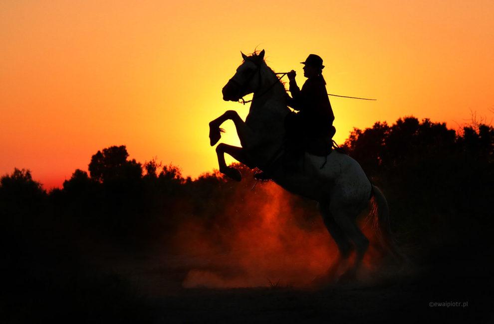 Duży kontrast, jak fotografować, rozpiętość tonalna, poradnik fotograficzny, jeździec na tle zachodzącego słońca