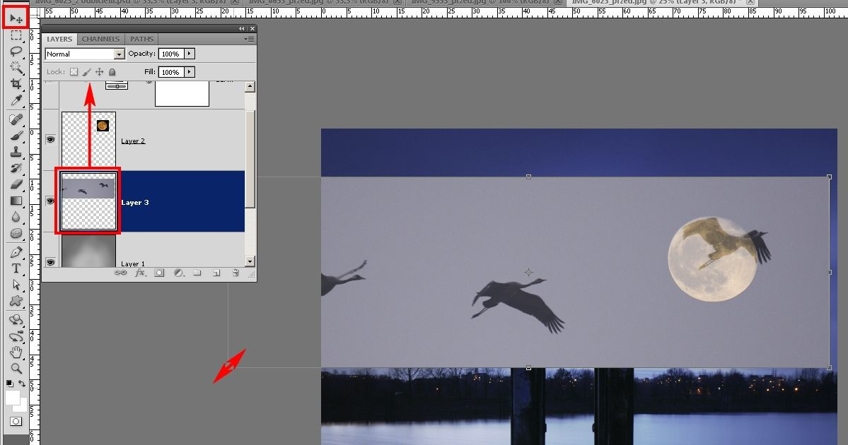 fotomontaż, krajobraz z ptakami i księżycem