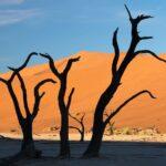 Wydmy w Namibii
